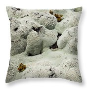 Close Up Of Lichens Commonly Called Rock Moss Throw Pillow