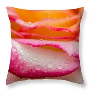 Close Up Of Pink Rose Petails Covered Dew Throw Pillow