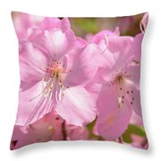 Close Up Of Pink Shell Azalea Flowers Throw Pillow
