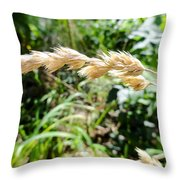 Close-up Of Prairie Grass Throw Pillow