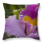 Close-up Of Purple Orchid Flowers Throw Pillow