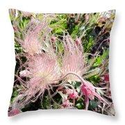 Close-up Of The Prairie Smoke Wildflower Throw Pillow