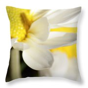 Close Up Of White Daisy Throw Pillow
