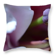 Close Up On A Lily Throw Pillow