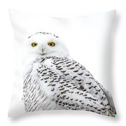 Close Up Snowy Throw Pillow
