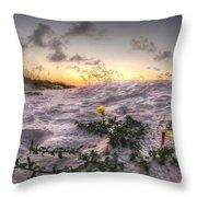 Closeup Flowers On The Beach Throw Pillow