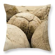Closeup Of Famous Spherical Moeraki Boulders Nz Throw Pillow