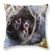 Closeup Of Lapland Longspur Chicks In Throw Pillow by Scott Dickerson