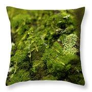 Closeup Of Moss And Lichen. Rhoen Throw Pillow