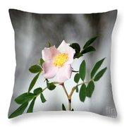 Cloud Mountain Cherokee Rose Throw Pillow