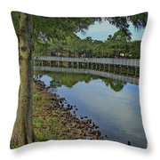 Cloud Reflection At The Pond Throw Pillow