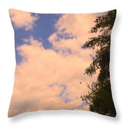 Cloud Slide Throw Pillow