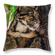 Clouded Leopard 2 Throw Pillow