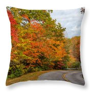 Cloudland Beauty Throw Pillow