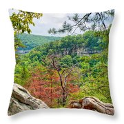 Cloudland Canyon State Park Georgia Throw Pillow