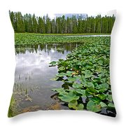 Clouds Among The Lily Pads In Swan Lake In Grand Teton National Park-wyoming  Throw Pillow