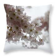 Clouds Of Soft Pink Blossoms - A Tribute To Spring Throw Pillow
