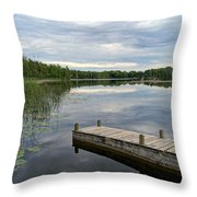 Cloudy Colored Water Throw Pillow