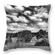 Cloudy Countryside Collage - Black And White Throw Pillow