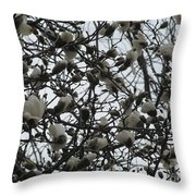 Cloudy Day For Young Magnolias Throw Pillow