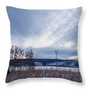 Cloudy Daybreak Dry Thistles Throw Pillow