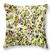 Clover Sprouts Throw Pillow