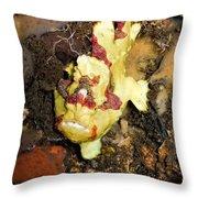 Clown Anglerfisch Throw Pillow