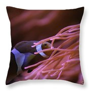 Clown Fish In Amoeba Throw Pillow