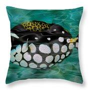Clown Triggerfish Throw Pillow