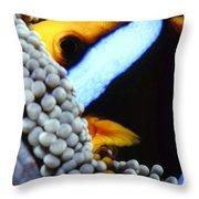 Clownfish 7 Throw Pillow