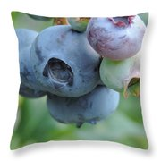 Clump Of Blueberries 2 Throw Pillow