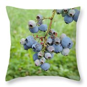 Clump Of Blueberries 3 Throw Pillow