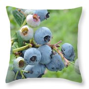 Clump Of Blueberries Throw Pillow