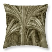 Cluny Museum Ceiling Detail Throw Pillow