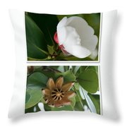 Clusia Rosea - Clusia Major - Autograph Tree - Maui Hawaii Throw Pillow by Sharon Mau