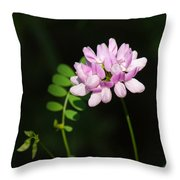 Cluster Of Crown Vetch Throw Pillow