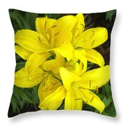 Cluster Of Yellow Lilly Flowers In The Garden Throw Pillow