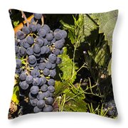 Clustered Throw Pillow
