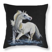 C'mon In Throw Pillow by Jean Ann Curry Hess