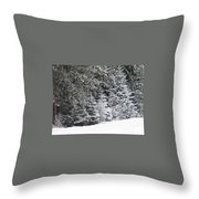 Coal Miner's Trail Throw Pillow