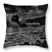 Coast 21 Throw Pillow