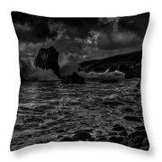 Coast 12 Throw Pillow