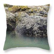 Coast Ecosystems Throw Pillow