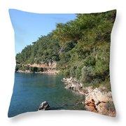 Coast To Oren Throw Pillow