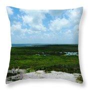 Coastal Aransas Nwr Throw Pillow