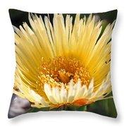Coastal Bloom II Throw Pillow