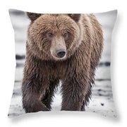 Coastal Brown Bear A Walk On The Beach Throw Pillow