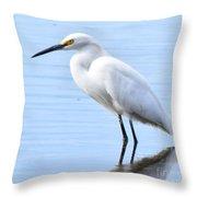 Coastal Crane Throw Pillow