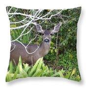 Coastal Deer Throw Pillow