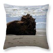 Coastal Driftwood Throw Pillow